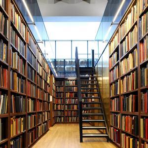 Библиотеки Борового
