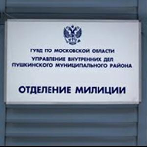 Отделения полиции Борового