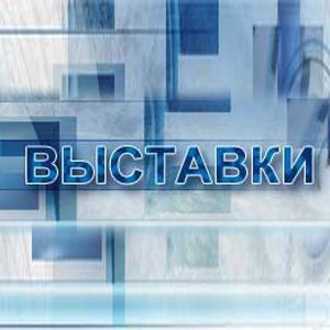 Выставки Борового